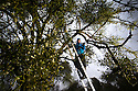 22/11/16<br />