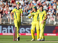 Australia's Marcus Stoinis celebrates with his teammates after taking the wicket of England's Alex Hales (not shown)<br /> <br /> Photographer Andrew Kearns/CameraSport<br /> <br /> Only IT20 - Vitality IT20 Series - England v Australia - Wednesday 27th June 2018 - Edgbaston - Birmingham<br /> <br /> World Copyright &copy; 2018 CameraSport. All rights reserved. 43 Linden Ave. Countesthorpe. Leicester. England. LE8 5PG - Tel: +44 (0) 116 277 4147 - admin@camerasport.com - www.camerasport.com