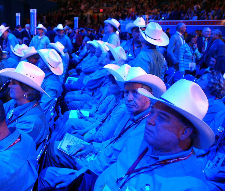 8/30/04/04.2004 REPUBLICAN NATIONAL CONVENTION/TEXAS DELEGATES--Texas delegates watch a video on the convention floor..CONGRESSIONAL QUARTERLY PHOTO BY SCOTT J. FERRELL