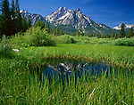 Sawtooth National Recreation Area, ID<br /> Mount McGown reflected in small pool of a weathered area near Stanley Lake