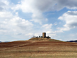 Field and tower near Pienza