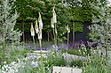 Daily Telegraph Garden, designed by Ulf Nordfjell, RHS Chelsea Flower Show 2009. Plants include Campanula rotundifolia (Harebell), Cornus kousa var. chinensis (Chinese dogwood), Eremurus 'Joanna' (Foxtail lily), Pyrus salicifolia 'Pendula' (Pendulous willow-leaved pear), and Salvia nemorosa 'Caradonna'.