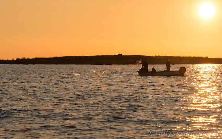 Fishermen from Västra Norrskär Island bring in their nets at sundown in the Gulf of Bothnia, Finland