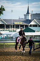 LOUISVILLE, KY - MAY 03: Kentucky Oaks contender Paradise Woods and Alex Bisono walk off the track at Churchill Downs on May 03, 2017 in Louisville, Kentucky. (Photo by Alex Evers/Eclipse Sportswire/Getty Images)