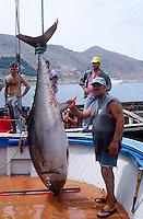 ITALY, fishermen of cooperative La Mattanza catch red tunafish by an old tradional method at island Favignana near Trapani Sicily, Rocco with a big Tuna in the port / ITALIEN, Fischer der Kooperative La Mattanza fangen und toeten Rotflossen Thunfisch mit Reusen vor der Insel Favignana bei Sizilien, der Fisch wird zu hohen Preisen auf Auktionen in Japan verkauft - More images available!