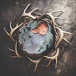 Bopp Newborn