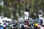 The peleton ride through snowy scenery during Stage 6 running 198km from Sisteron to Vence, France. 9th March 2018.<br /> Picture: ASO/Alex Broadway | Cyclefile<br /> <br /> <br /> All photos usage must carry mandatory copyright credit (&copy; Cyclefile | ASO/Alex Broadway)