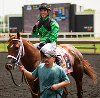 ARLINGTON HEIGHTS, IL - AUGUST 11: #8, Duchossois, the 3 year old chestnut gelding by Animal Kingdom, breaks his maiden on the third card of the day during the 36th Running of the Arlington Million at Arlington Park on August 11, 2018 in Arlington Heights, Illinois. (Photo by Carson Dennis/Eclipse Sportswire/Getty Images)