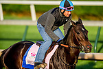 LOUISVILLE, KENTUCKY - APRIL 27: Serengeti Empress, trained by Tom Amoss, exercises in preparation for the Kentucky Oaks at Churchill Downs in Louisville, Kentucky on April 27, 2019. John Voorhees/Eclipse Sportswire/CSM