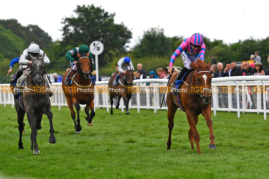Winner of The Molson Coors Handicap (Class 2), Examiner (r) ridden by Richard Kingscote and trained by Stuart Williams during Whitsbury Manor Stud Bibury Cup Day Racing at Salisbury Racecourse on 28th June 2017