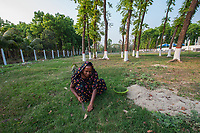Bangladesh, Jhenaidah. Fecal Sludge Treatment plant, where the waste is disposed of through SNV. Plant growth through the compost. Woman cutting grass.