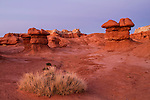 Goblin Valley Illuminated by Setting Sun in Goblin Valley State Park Utah
