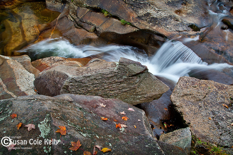 Fall foliage along the Bear River in Grafton Notch State Park, Newry, ME, USA