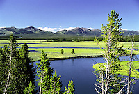"The Yellowstone river courses slowly through Hayden Valley, in Yellowstone National Park.  This view is from the iconic overlook known as ""Grizzly Overlook"". A great place to see grizzlies too!"