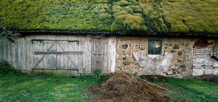 Moss covered farm buildings near Tukums. Zemgale. Latvia.