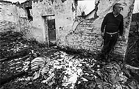 Balka War: In his destroyed Stall with dead cattle, Pokupsko, Croatia 1991