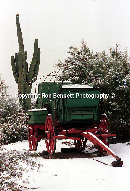 Chuck wagon desert snow saguaro cacti Arizona, chuck wagon in desert snow with saguaros cacti, chuck wagon, desert snow, Arizona, State of Arizona, Southwest, Fine Art Photography by Ron Bennett, Bennett, Fine Art, Fine Art photography, Art Photography, Copyright RonBennettPhotography.com © Fine Art Photography by Ron Bennett, Fine Art, Fine Art photography, Art Photography, Copyright RonBennettPhotography.com ©
