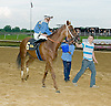 Bet the Power winning The Stonewall Farm Ocala-Hockessin Stakes  then being disqualified at Delaware Park on 7/28/12