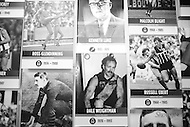 Image Ref: M186<br /> Location: National Sports Museum, MCG<br /> Date: 28 Sept 2014