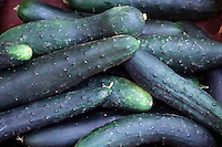 FOOD GROUPS: VEGETABLES<br /> Cucumbers<br /> Cucumbers are a good source of Vitamin A, Thiamin, Riboflavin, Pantothenic Acid, Calcium and Phosphorus, and a very good source of Dietary Fiber, Vitamin C, Vitamin K, Vitamin B6, Folate, Magnesium, Potassium, Copper and Manganese.