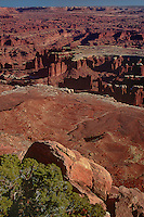 731200002 a spectacular vista of high desert badlands buttes and canyons seen from grandview point in canyonlands national park utah
