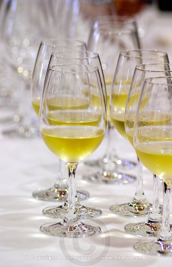 Wine tasting. Wine glasses. Quinta do Carmo, Estremoz, Alentejo, Portugal