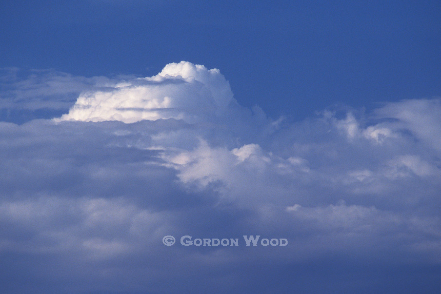 Cumulonimbus Cloud in the Evening