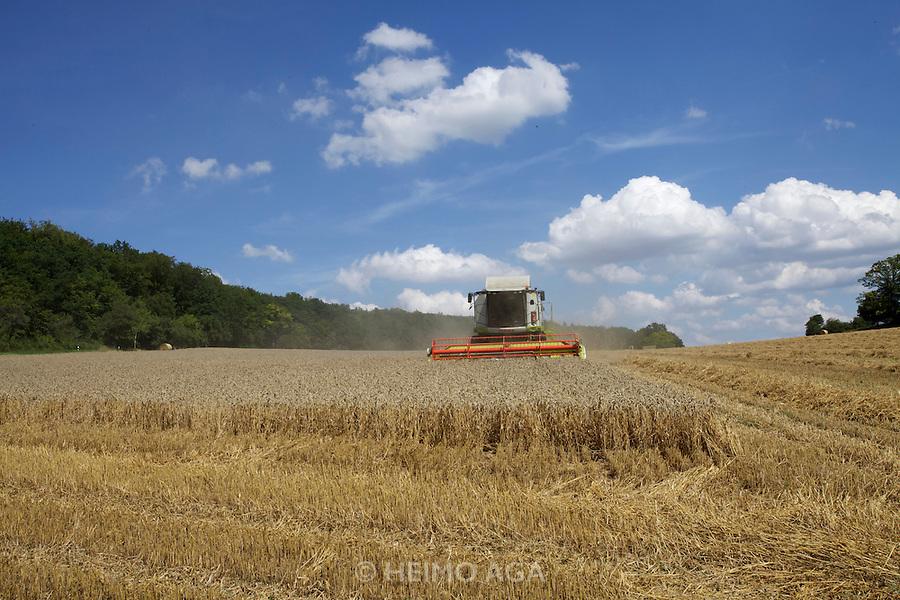 Wheat harvest in Baden-Württemberg.
