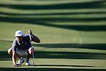 2017 MW M Golf