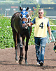 Make Money Honey at Delaware Park on 9/11/13