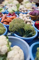 Europe/France/Midi-Pyrénées/31/Haute-Garonne/Toulouse: Etal de légumes sur le marché du boulevard de Strasbourg