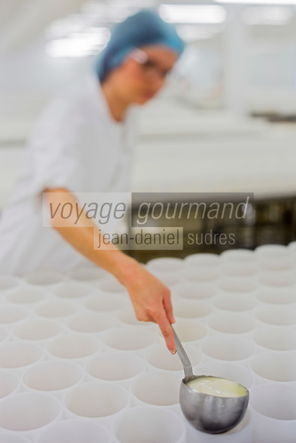 France, Calvados (14), Pays d'Auge, Saint-Loup-de-Fribois, Fromagerie du Domaine de Saint Loup, Camembert au lait cru moulé à la louche de la fromagerie du village, moulage manuel à la louche // France, Calvados, Pays d'Auge, Saint Loup de Fribois, raw milk camembert to cast the ladle of the cheese of the village, the manual casting ladle - Cheesery:  Domaine de Saint Loup<br /> <br /> [Autorisation : 2014-118]