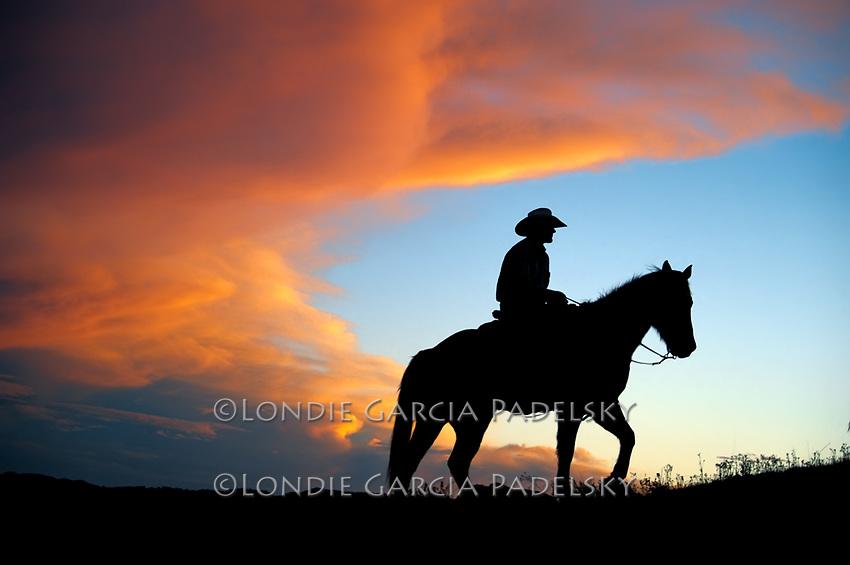 Cowboy riding at sunset, Central Coast, California.