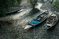 Boats anchored during high tide at Sunderbans, West Bengal, India. Arindam Mukherjee