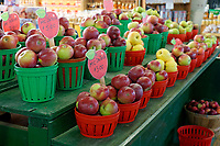 Baskets of fresh Quebec grown McIntosh apples for sale in the Jean Talon public market or Marche Jean Talon, Montreal, Quebec, Canada