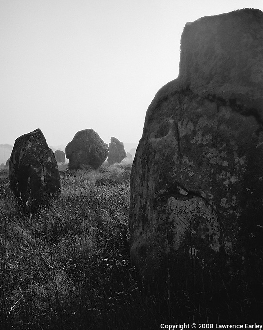 A menhir that stands among the stones in the Menec Alignment, Carnac.