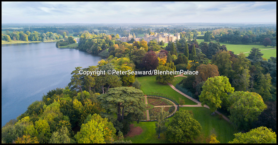 BNPS.co.uk (01202 558833)Pic: PeterSeaward/BNPSThe stunning Blenheim Palace estate - a new exhibition reveals the vast estate was brought to its knees by an obsession with flower's.<br /> <br /> A previously unseen set of delicate flower painting's put on show at Blenheim Palace actually reveal a Georgian obsession that brought down the 5th Duke of Marlborough.<br /> <br /> The 18th century watercolour's by the Susan Spencer-Churchill, the 5th Duchess, have just been put on display her Oxfordshire home for the first time.<br /> <br /> But the story behind the beautiful paintings uncovers the expensive fascination of the late Geogian aristocracy for the new found craze of plant hunting, which the Duke carried on to such an extent that his vast estate was actually plunged into insolvancy.