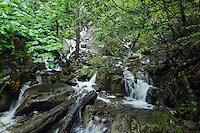 Mountain stream. Deep Cove, Burrard Inlet, Vancouver, British Columbia, Canada.