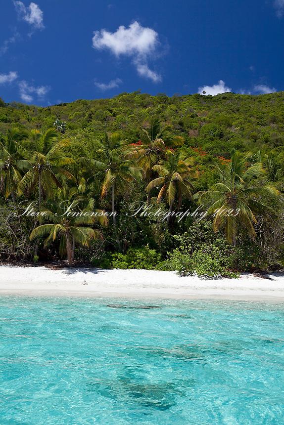 Little Cinnamon Bay with flamboyant flowers in bloom.Virgin Islands National Park, St. John.U.S. Virgin Islands