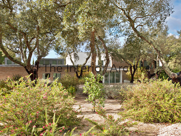 The exterior of a contemporary house set in a naturalistic garden planted with trees and shrubs.
