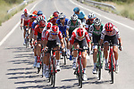 The large breakaway group during Stage 8 of La Vuelta 2019 running 166.9km from Valls to Igualada, Spain. 31st August 2019.<br /> Picture: Luis Angel Gomez/Photogomezsport | Cyclefile<br /> <br /> All photos usage must carry mandatory copyright credit (© Cyclefile | Luis Angel Gomez/Photogomezsport)