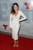 New York, NY -  May 13 : Yarel Ramos attends Telemundo's 2014 Upfront in New York<br /> held at Jazz at Lincoln Center's Frederick P. Rose Hall<br /> on May 13, 2014 in New York City. Photo by Brent N. Clarke / Starlitepics