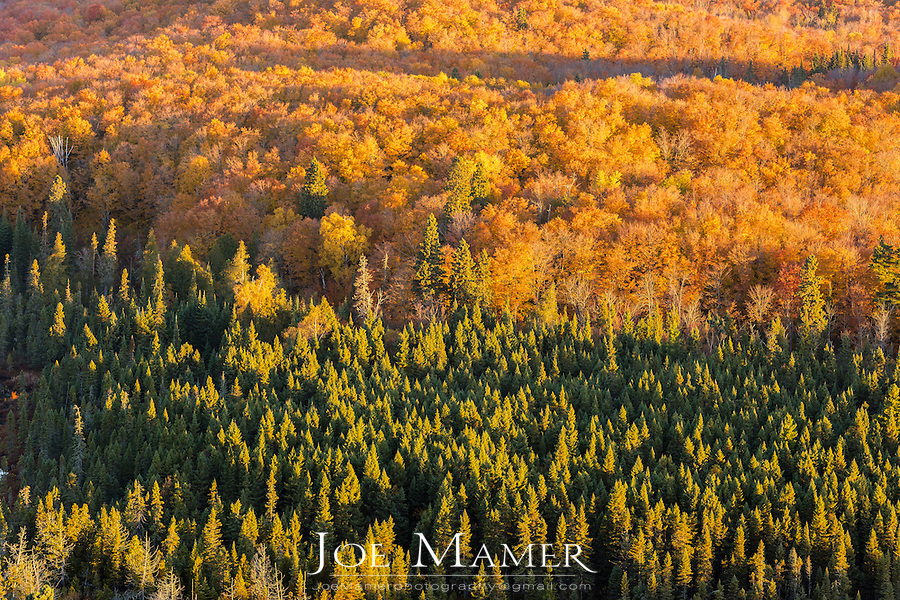 View from Oberg Mountain at sunrise in late autumn.