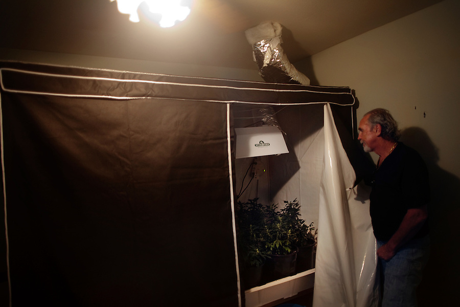 "Laguna Woods, California, October, 26, 2010 - Laguna Woods Village resident, Lonnie Painter shows an indoor garden for medical marijuana at the home of one of his friends (name withheld). Painter is the chairman of the Laguna Woods for Medical Cannabis, a collective of about 100 members that operates as a dispensary for medical marijuana. Up until this month, the members were allowed to grow marijuana within their own gardens. Painter says, ""We do this by the book, to the letter of the law. We are not potheads. We are people with legitimate medical needs."" Despite their best efforts, the group has faced some challenges recently. The board that oversees the community recently banned the growing of marijuana in the community gardens, despite the fact that each person has their own fenced and locked garden and the entire compound is surrounded by a chain-linked fence with barbed-wire. ""We can still grow indoors, but it costs 20 times as much,"" says Painter. California's Compassionate Use Act, passed in 1996, allows people with a prescription to use and cultivate medicinal marijuana. .."