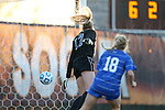 29 November 2013: Duke's Meghan Thomas (17) and Krysia Sikora (18) are beaten for a goal by Virginia Tech's Katie Yensen (not pictured) with only 13.5 seconds left in the first half. The Virginia Tech University Hokies played the Duke University Blue Devils at Thompson Field in Blacksburg, Virginia in a 2013 NCAA Division I Women's Soccer Tournament Quarterfinal match. Virginia Tech won the game 3-0.