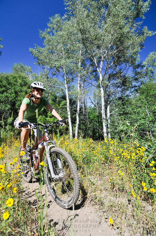 Mountain biking the trails above Steamboat Springs, Colorado