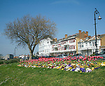 Flower beds in Cliff Gardens, Westcliff Parade, Southend, Essex