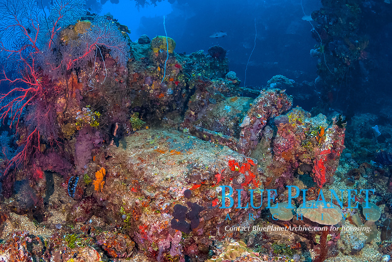 Windlass on deck, coral reef senic, soft corals, fish, encrusted, Fujikawa Maru in Truk Lagoon, Operation Hailstone, Wreck, WWII, Japanese shipwreck, Chuuk, Micronesia, Truk, Chuuk Lagoon, Pacific Ocean, MR