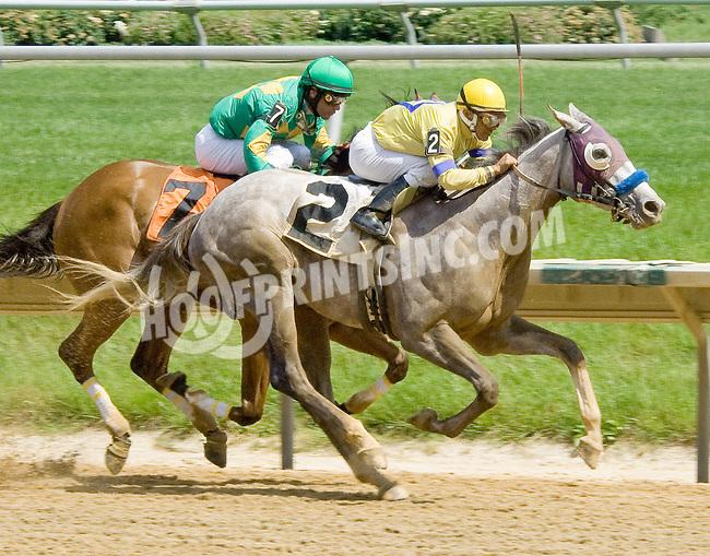 Flashy Bullet winning at Delaware Park on 5/24/12