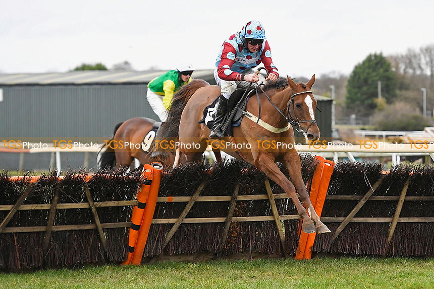 Ding Ding ridden by Marc Goldstein and trained by Sheena West clear the last in The Extech Cloud-Humanising It Handicap Hurdle during Horse Racing at Plumpton Racecourse on 10th February 2020